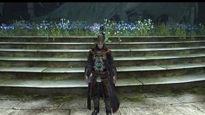 Dragons_dogma_online__126