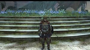 Dragons_dogma_online__129