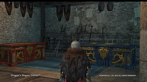 Dragons_dogma_online__177
